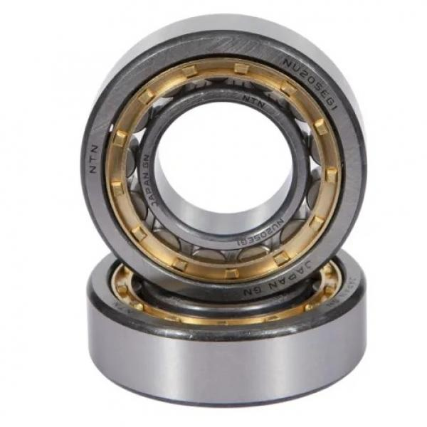 35 mm x 100 mm x 25 mm  FBJ NU407 cylindrical roller bearings #1 image